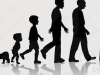 إنسانيات وثقافة( إنشاء| إثراء)